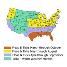 Flea and Tick Season is Here - Be Prepared!