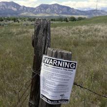 Plague Found in Arizona Fleas