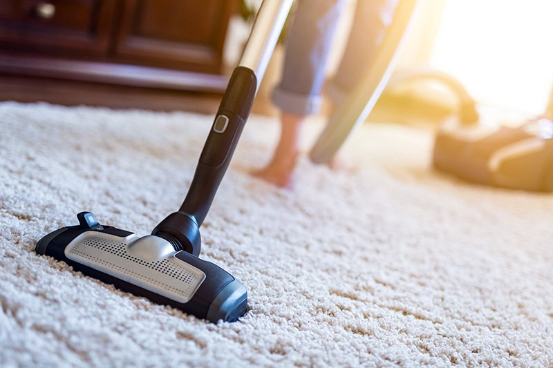Treating the environment for fleas by vacuuming the carpet