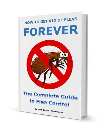 How to Get Rid of Fleas with Flea Control eBook