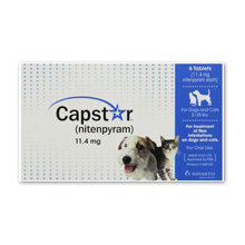 Capstar Flea Treatment for Dogs and Cats Review
