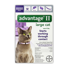 Bayer Advantage II Flea Control Treatment for Cats Review