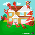 8 Reasons Why Pest and Rodent Control is Important